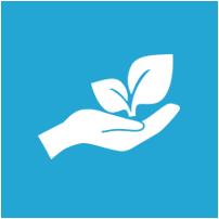 Environmental Conscious Lawn Care